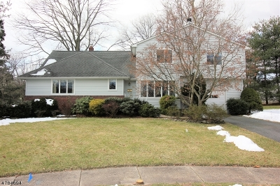 East Brunswick Twp. Single Family Home For Sale: 10 Brantwood Ct