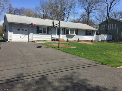 Bridgewater Twp. Single Family Home For Sale: 48 Somerset Ave