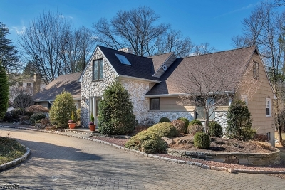 Florham Park Boro Single Family Home For Sale: 141 Summit Road