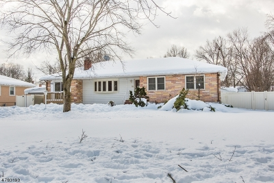 Parsippany-Troy Hills Twp. Single Family Home For Sale: 32 Sagamore Rd