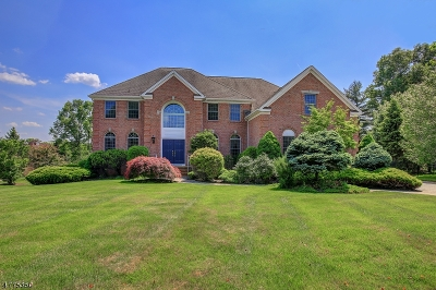 Bedminster Twp. Single Family Home For Sale: 11 Jordanna Ct