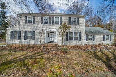 Bridgewater Twp. Single Family Home For Sale: 7 Heather Hill Way