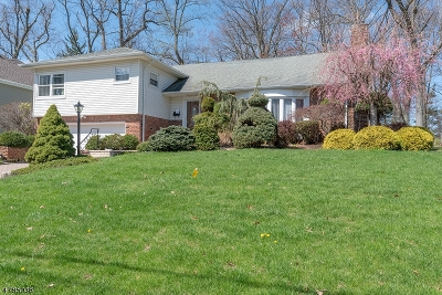 Millburn Twp. Single Family Home For Sale: 56 Silver Spring Rd