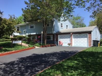 East Brunswick Twp. Single Family Home For Sale: 38 Wellington Rd