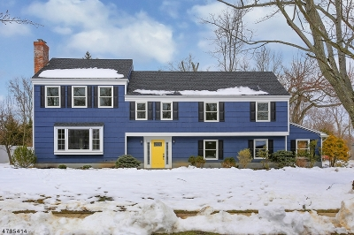 Bernards Twp. Single Family Home For Sale: 14 Juniper Way