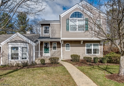 Bedminster Twp. Condo/Townhouse For Sale: 215 Reed Ln