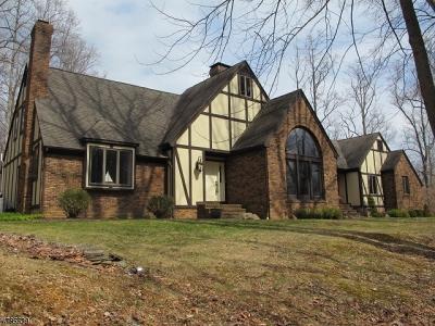 Bernardsville Boro Single Family Home For Sale: 93 Douglass Ave
