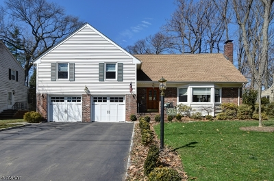Cranford Twp. Single Family Home For Sale: 505 Casino Ave