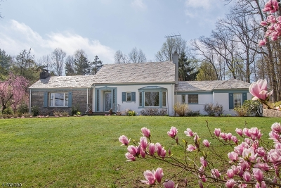 Chatham Twp Single Family Home For Sale: 419 Fairmount Ave