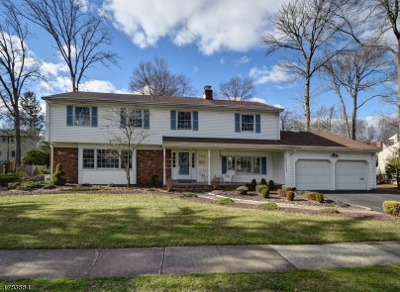 WestField Single Family Home For Sale: 781 Cranford Ave