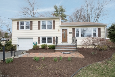 Florham Park Boro Single Family Home For Sale: 47 Orchard Rd