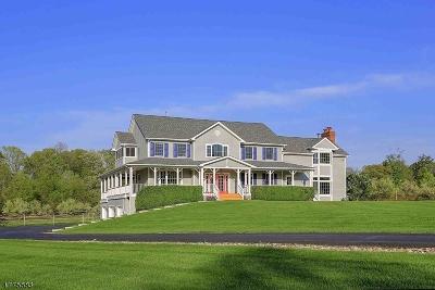Bernards Twp. Single Family Home For Sale: 327 Somerville Rd