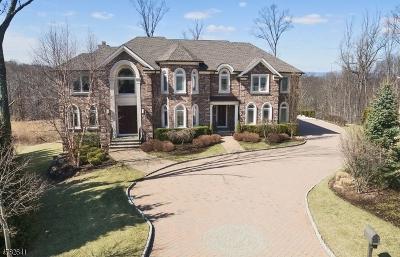 Livingston Twp. Single Family Home For Sale: 9 Jason Ln