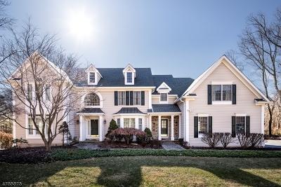Bernards Twp. Single Family Home For Sale: 265 Mount Prospect Rd