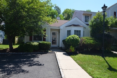Bedminster Twp. Condo/Townhouse For Sale: 272 Long Meadow Rd