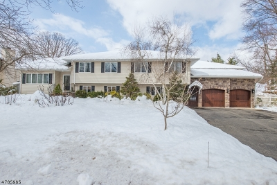 East Hanover Twp. Single Family Home For Sale: 111 McKinley Ave