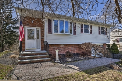 Peapack Gladstone Boro Single Family Home For Sale: 8 West Ave