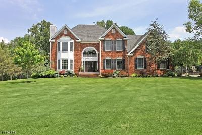 WARREN Single Family Home For Sale: 14 Foxglove Drive