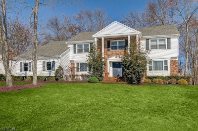 Florham Park Boro Single Family Home For Sale: 36 Puddingstone Way