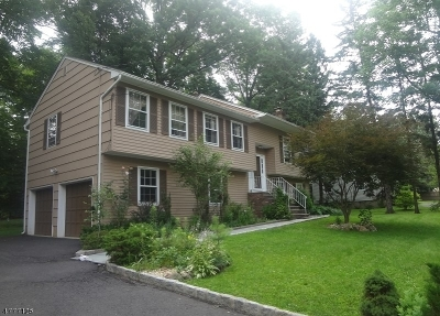 Chatham Twp. Single Family Home For Sale: 10 Daniel St