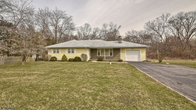 Bridgewater Twp. Single Family Home For Sale: 433 Union Ave