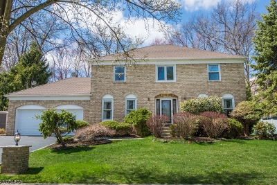 East Hanover Twp. Single Family Home For Sale: 30 Silver Spring Ct