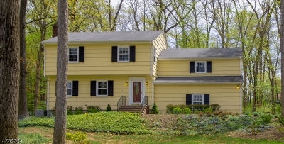 Bernards Twp. Single Family Home For Sale: 8 Harrison Brook Dr