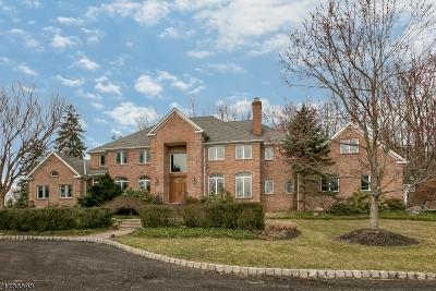 Mendham Twp. NJ Single Family Home For Sale: $1,450,000