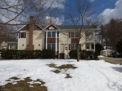 Morristown Town NJ Rental For Rent: $2,450