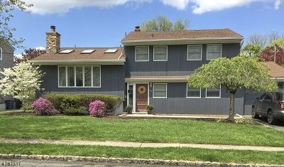 Springfield Twp. Single Family Home For Sale: 10 Hemlock Ter