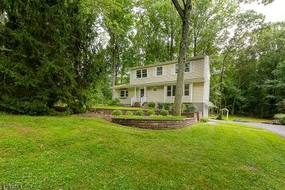 Randolph Twp. Single Family Home For Sale: 11 Pamela Dr