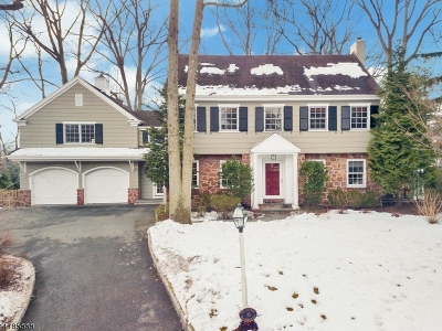 Millburn Twp. Single Family Home For Sale: 10 Pine Terrace East