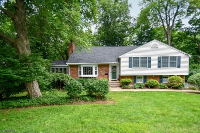 New Providence Boro Single Family Home For Sale: 16 Deerfield Rd