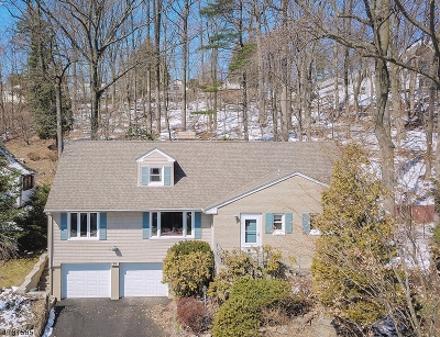 West Orange Twp. Single Family Home For Sale: 29 Undercliff Ter