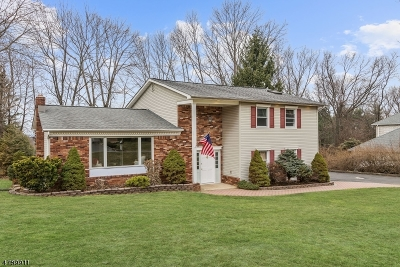 Randolph Twp. Single Family Home For Sale: 67 Hilltop Dr