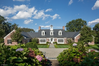Bernardsville Boro Single Family Home For Sale: 52 Chapin Rd