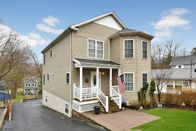 Morristown Town Single Family Home For Sale: 47 Lake Rd