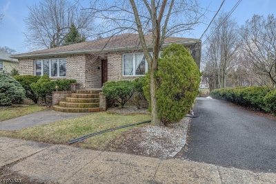 Springfield Twp. Single Family Home For Sale: 291 Mountain Ave