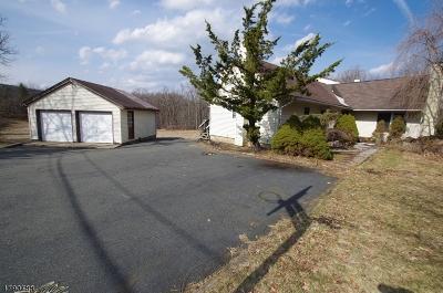 Roxbury Twp. Single Family Home For Sale: 26 Cornhollow Rd