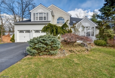 West Orange Twp. Single Family Home For Sale: 8 Faas Ct
