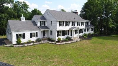 Bernards Twp. Single Family Home For Sale: 154 Old Farm Rd