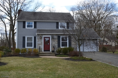 Morris Twp. Single Family Home For Sale