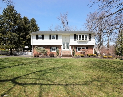 East Brunswick Twp. Single Family Home For Sale: 16 Wick Rd