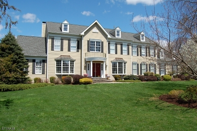 Bernards Twp. Single Family Home For Sale: 20 Squire Ct