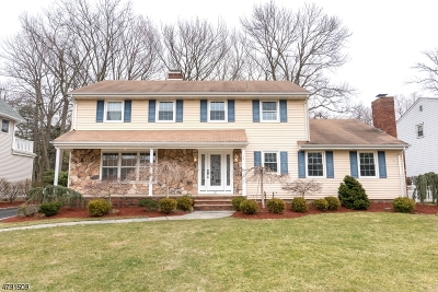 Cranford Twp. Single Family Home For Sale: 90 Belmont Ave