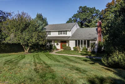 Berkeley Heights Twp. Single Family Home For Sale: 64 Summit Road