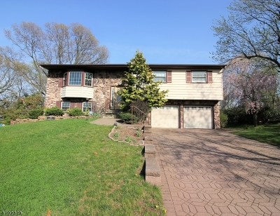 East Brunswick Twp. Single Family Home For Sale: 10 Sherry Rd