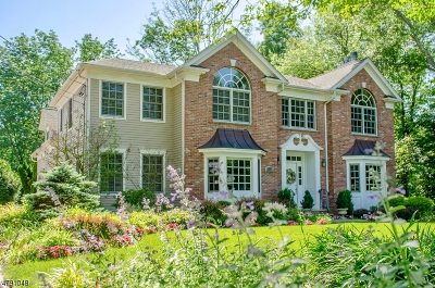 Chatham Twp. Single Family Home For Sale: 243 Southern Blvd