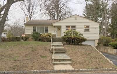 Springfield Twp. Single Family Home For Sale: 27 Tulip Rd