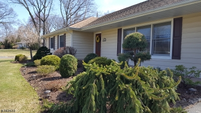 Hanover Twp. Single Family Home For Sale: 41 Fieldstone Dr